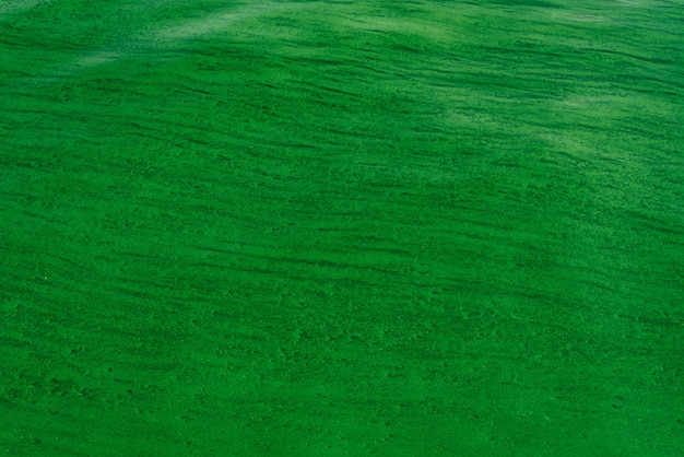 Fundo das ondulações suaves na superfície da água com algas verdes