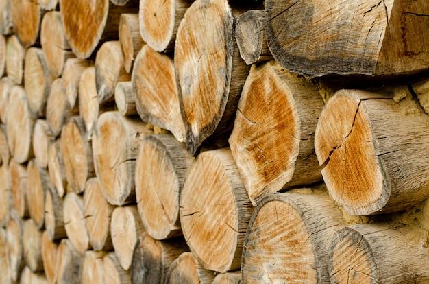 Fundo de anéis de madeira envelhecida.