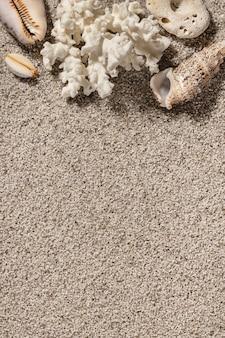 Fundo de areia limpa com conchas. textura da praia copie a vista superior do espaço