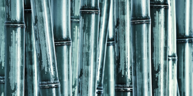 Fundo de bambu duro