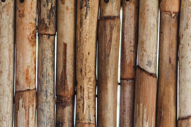 Fundo de bambu. parede de bambu de madeira. fechar-se