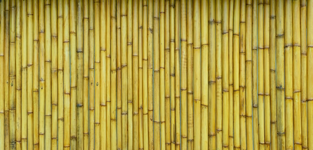 Fundo de bambu