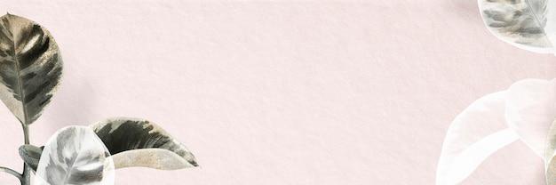 Fundo de banner rosa na borda da planta de borracha