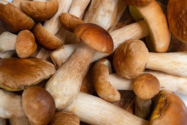 Fundo de boletus edulis de tampa marrom. muitos cogumelos comestíveis na mesa da cozinha. ninguém