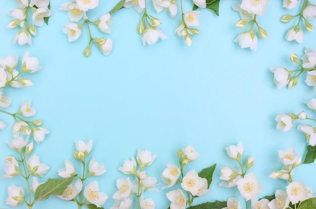 Fundo de cartão de felicitações, delicadas flores de jasmim em um fundo azul com espaço de cópia com foco seletivo