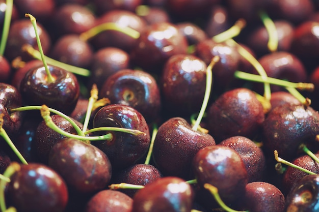 Fundo de close-up de pilha de cerejas maduras