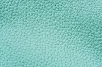 Fundo de couro verde menta