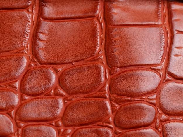 Fundo de crocodilo de textura de pele