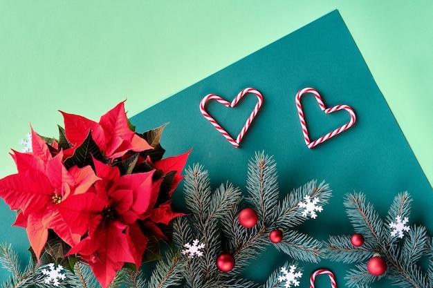 Fundo de dois tons de natal em verde. galhos de pinheiro, poinsétia vermelha, formas de coração de bengalas doces.