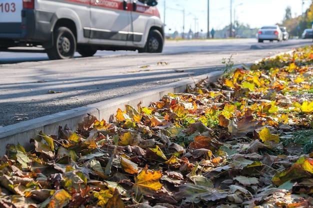 Fundo de esboço de outono com folhas amareladas e caindo no parque em frente a edifícios residenciais