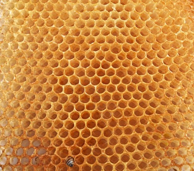 Fundo de favo de mel