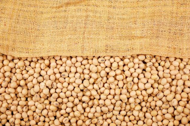 Fundo de feijão de soja