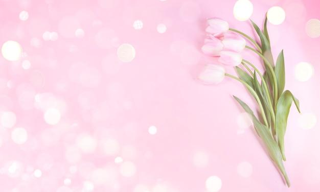 Fundo de férias para dia das mães, 8 de março, aniversário