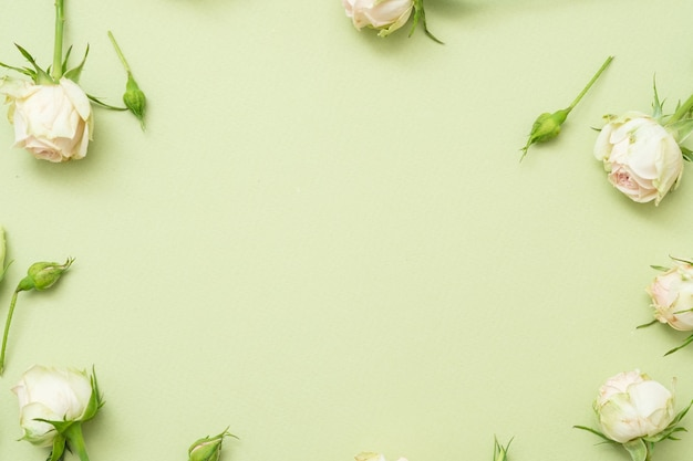 Fundo de flor de parabéns aniversário. moldura rosa branca com espaço livre.