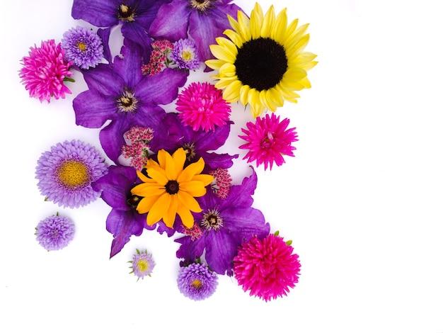 Fundo de flores de girassóis e ásteres