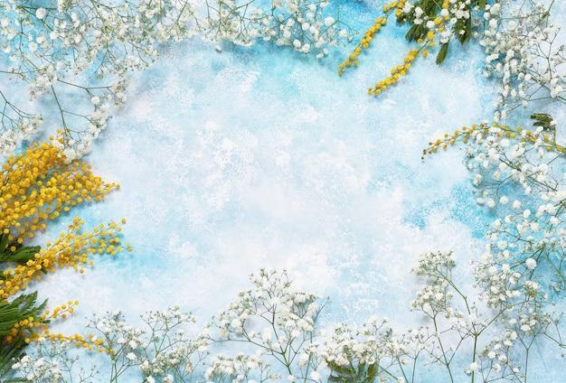 Fundo de flores de primavera com mimosa e gypsophila