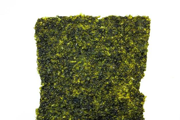 Fundo de folhas de algas marinhas.
