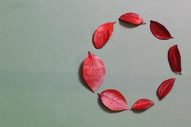 Fundo de folhas de outono em uma natureza de conceito de mesa verde isolada