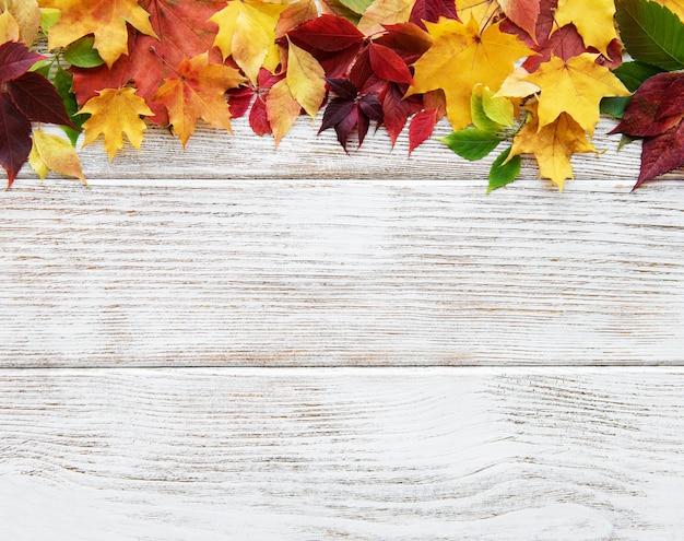 Fundo de folhas de outono