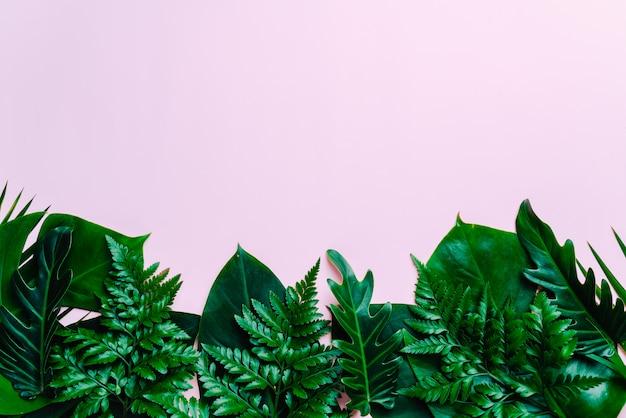 Fundo de folhas de palmeira tropical com espaço de cópia