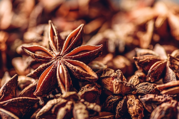 Fundo de frutas e sementes de anis estrelado.