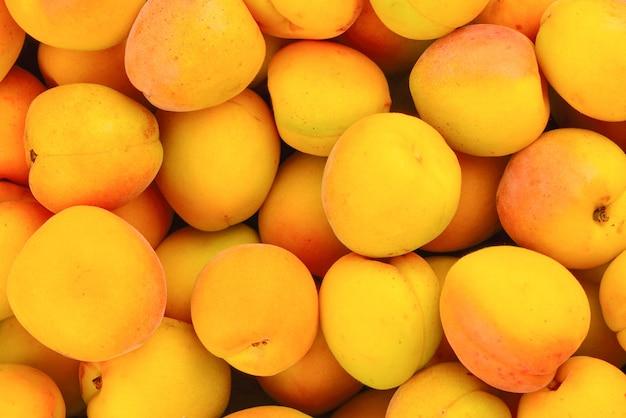 Fundo de frutas maduras suculentas laranja damascos.