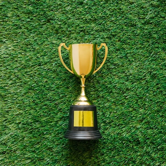 Fundo de futebol na grama com troféu