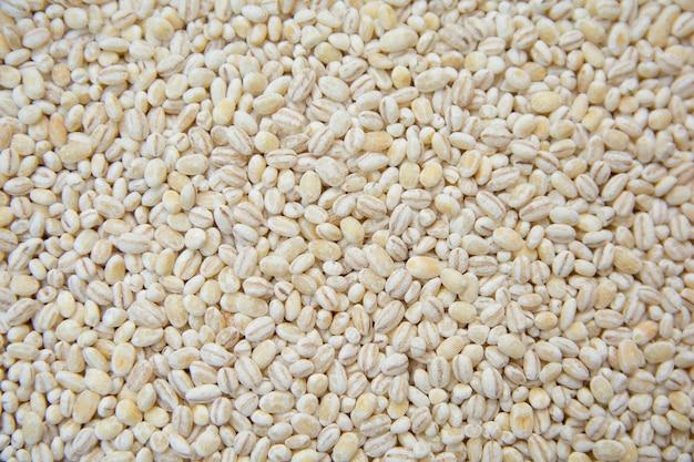 Fundo de grãos de cevada