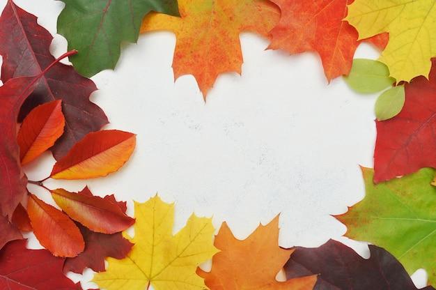 Fundo de grinalda de quadro de folhas de outono.