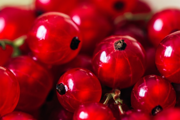 Fundo de groselha vermelha madura e suculenta.