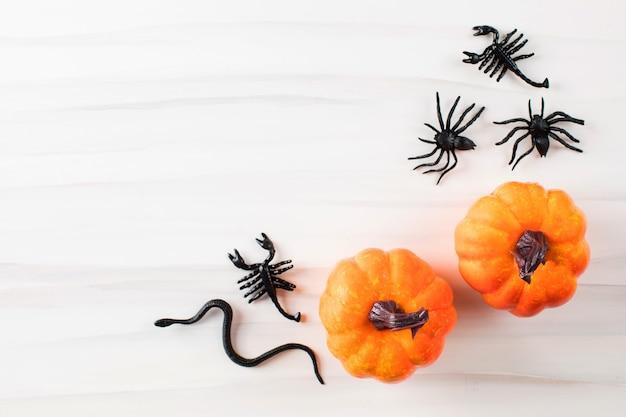 Fundo de halloween, abóboras, aranhas e cobras em um fundo branco com espaço para texto