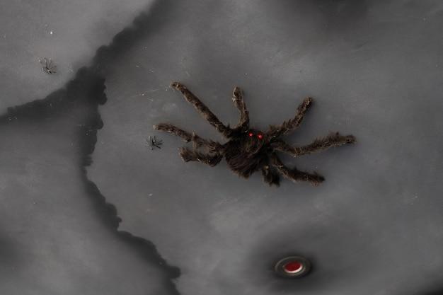 Fundo de halloween com aranha negra grande artificial com espaço para cópia