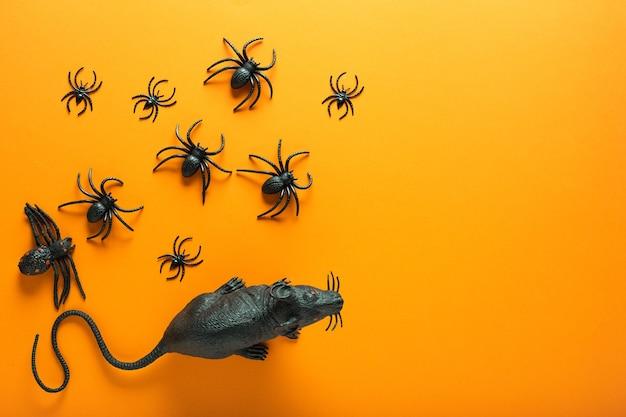 Fundo de halloween com decorações: rato preto e diferentes aranhas, como símbolos do halloween no fundo laranja. conceito de feliz dia das bruxas. vista superior com espaço de cópia.