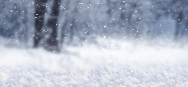 Fundo de inverno com floresta durante a queda de neve, panorama