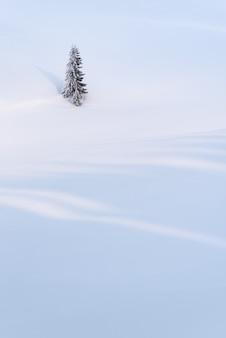 Fundo de inverno com um abeto solitário em um campo de neve. montanha coberta de neve