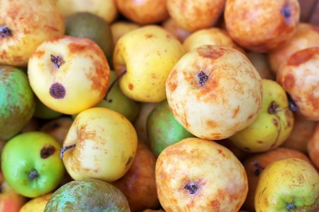 Fundo de maçãs coloridas maduras ligeiramente estragadas. maçãs no mercado