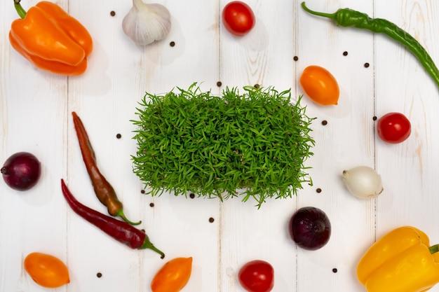 Fundo de madeira branco de cozinhar. especiarias, vegetais e couves, cenouras, microgreen. vista do topo.