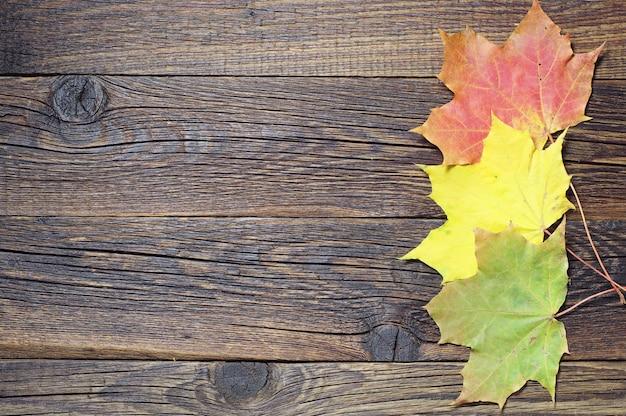 Fundo de madeira com folhas coloridas de outono
