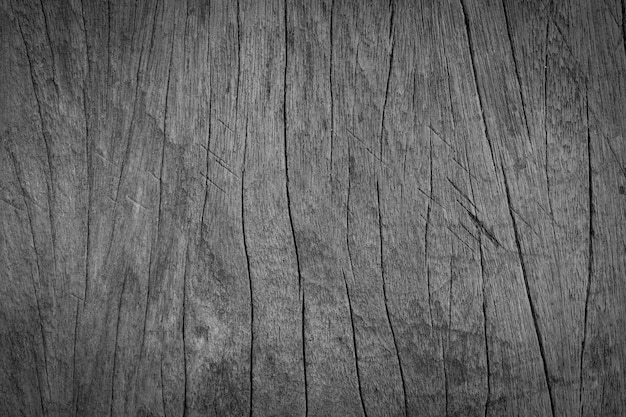 Fundo de madeira velho preto e branco da natureza da textura do vintage. estilo rústico