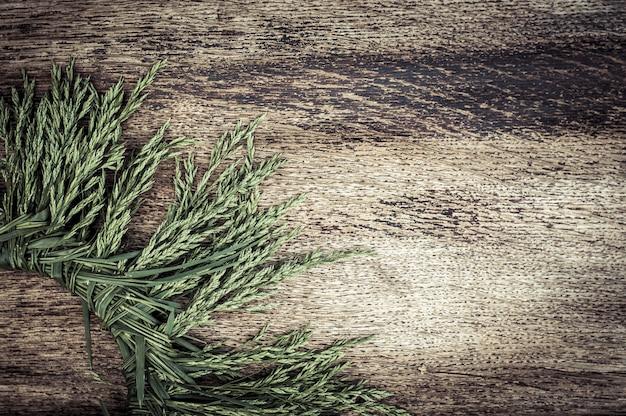 Fundo de madeira vintage com grama de verão
