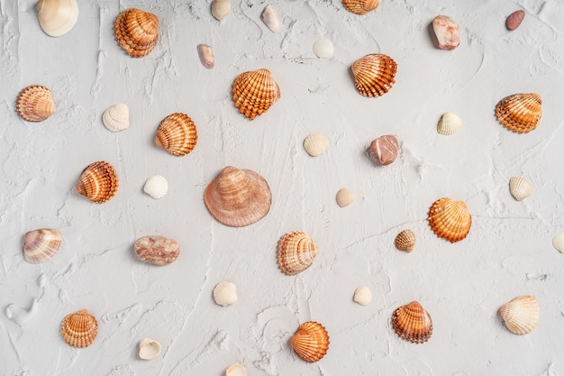 Fundo de mármore com conchas do mar. padrão de férias