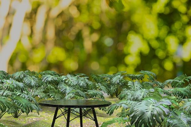Fundo de mesa de madeira vazio, mesa para exposição do produto