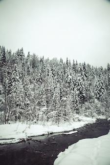 Fundo de natal com pinheiros nevados, paisagem de inverno linda montanha