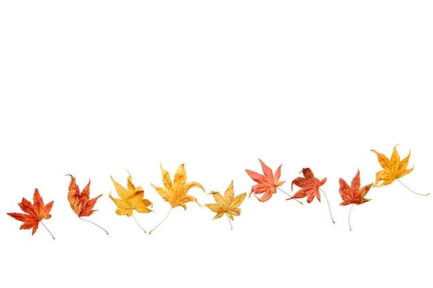 Fundo de outono caindo folhas