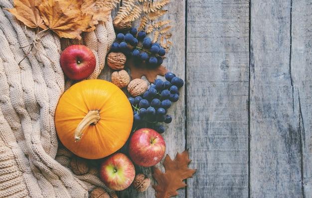 Fundo de outono com abóbora. dia de ação de graças. foco seletivo.