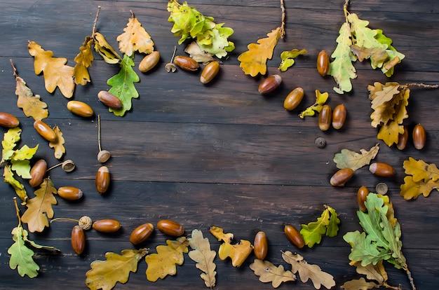 Fundo de outono com bolotas e folhas de carvalho