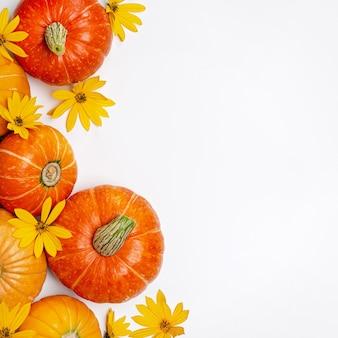 Fundo de outono com flores amarelas e abóboras laranja. layout para ofertas sazonais e cartões de férias, vista de cima.