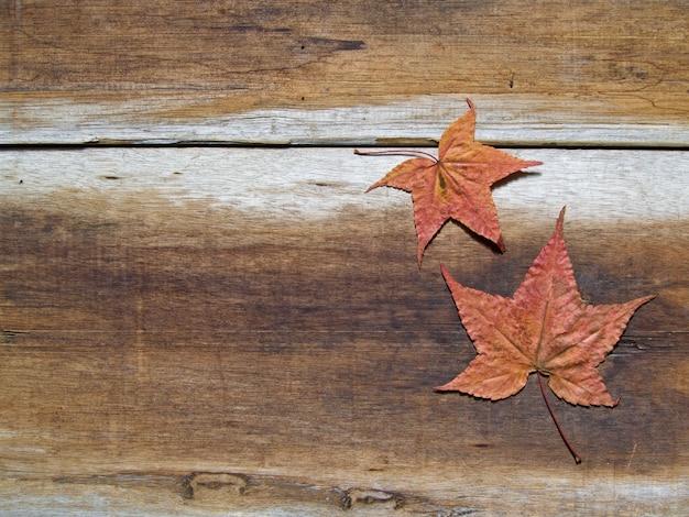 Fundo de outono com folha de plátano no chão de madeira