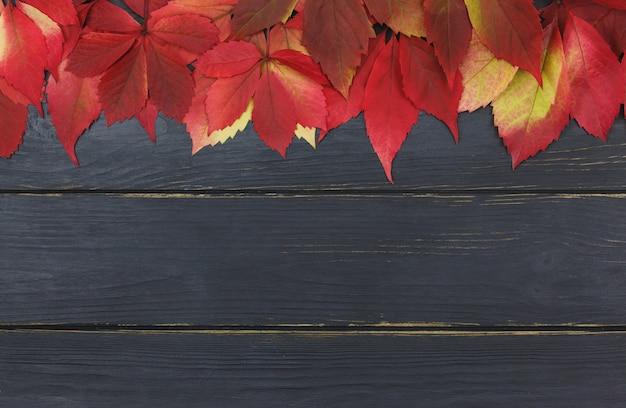 Fundo de outono com folhas de outono colorido na mesa de madeira preta