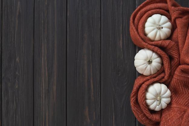 Fundo de outono com manta de malha de lã e abóboras brancas. espaço para texto.